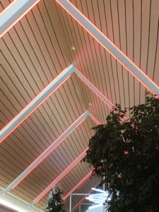 PMC Lighting Tunable Solutions Color Changing Lights at St. Vincent's Hospital in Indianapolis, Indiana.